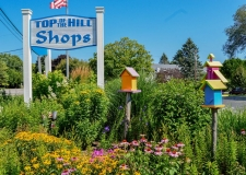 toth sign birdhouse and flowers